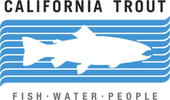 California Trout Fish Water People