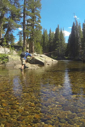 Yosemite National Park Fly Fishing