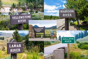 Yellowstone River SIgns